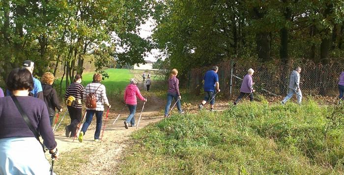 Powraca Ursynowski Nordic Walking